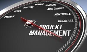 Projektmanagement als Führungstool