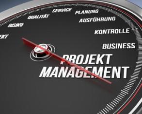 Neue Formate für Projektmanager