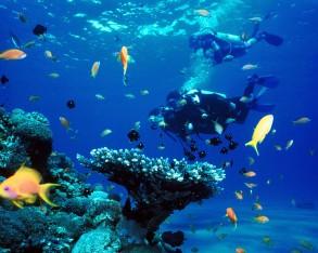 Das Meer als Möglichkeitsraum