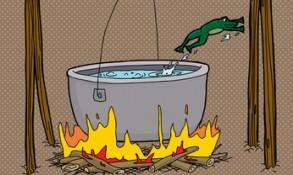 Der gekochte Frosch und der dumme Floh
