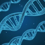 DNA_Gene