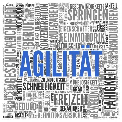 Agilität (Agility)